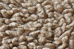 Carpet fibers close up