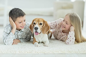 two siblings on the carpet with their dog after the carpet received antibacterial sanitizer treatment